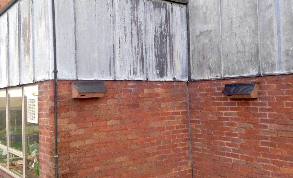 Swift nest boxes fitted on a building