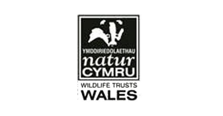 Wildlife Trust Wales Logo